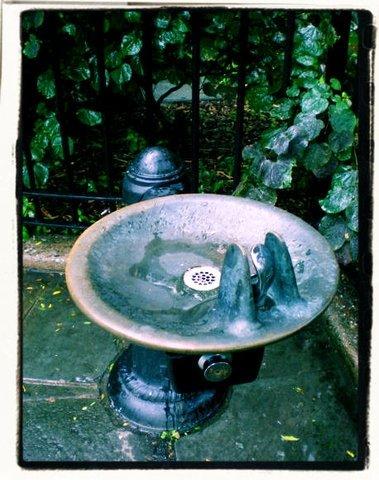Fountain, 2007