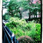 Technicolor Gardens, 2007